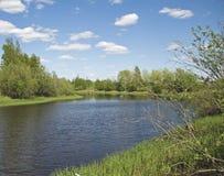 rzeka mała Fotografia Royalty Free
