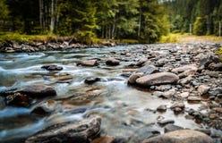 rzeka mała Zdjęcie Royalty Free