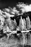 rzeka merced Yosemite doliny Obrazy Royalty Free