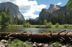 rzeka merced Yosemite doliny Zdjęcia Stock