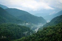 Rzeka mgła Zdjęcia Royalty Free