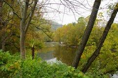Rzeka między spadków drzewami Obrazy Royalty Free