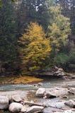 rzeka mountain Obrazy Royalty Free