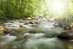 rzeka mountain obrazy stock