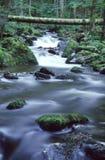 rzeka mountain zdjęcie royalty free