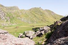 Aguas Tuertas dolina. Hiszpańszczyzny Pyrenees Zdjęcia Royalty Free