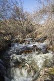 Rzeka na górze Fotografia Stock