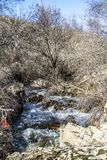 Rzeka na górze Obrazy Stock