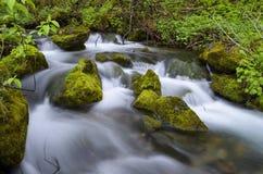 Rzeka, Norwegia Obraz Stock