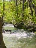 rzeka półmusujące Obrazy Royalty Free