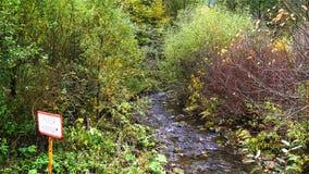 Rzeka płynie nad skałami zbiory