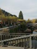 Rzeka park zdjęcie royalty free