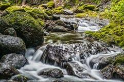 Rzeka przepływ zdjęcia royalty free