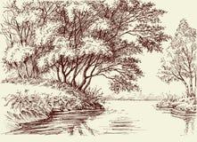 Rzeka przepływ w drewnach royalty ilustracja