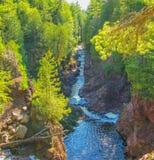 Rzeka przez drewien zdjęcie stock