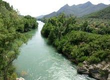 Rzeka przez lasów Zdjęcie Stock