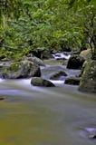 Rzeka przez lasu Zdjęcia Royalty Free