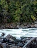 Rzeka przez lasu obraz stock