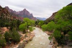 Rzeka przez Zion Obraz Royalty Free