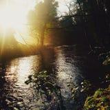 Rzeka przy wschód słońca Fotografia Royalty Free