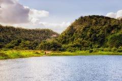 Rzeka, Rio Chavon w republice dominikańskiej Obraz Royalty Free