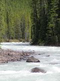 rzeka ryczący Zdjęcie Stock