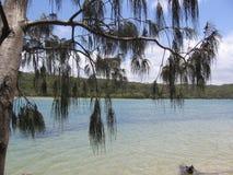 rzeka sceniczna Zdjęcie Royalty Free