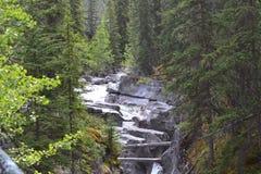 Rzeka, skały i drzewa, obrazy stock