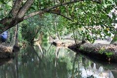Rzeka stojące wody przy Kollam Zdjęcie Stock