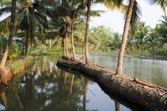 Rzeka stojące wody przy Kollam Fotografia Royalty Free