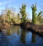 Rzeka test, Hampshire zdjęcia stock