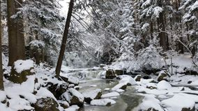 Rzeka van sneeuwå ry Bergen› nieg las Bosgã ³ Royalty-vrije Stock Afbeelding