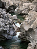 rzeka verzasca Obraz Stock
