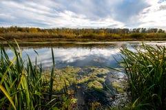 Rzeka wśliznie w odległość w jesieni barwi zdjęcie stock