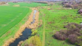 Rzeka w?r?d zielonych wiosen poly zbiory