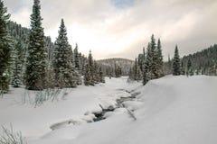 Rzeka w śnieżnym lesie zdjęcia stock