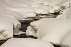 Rzeka w śnieżnym lesie zdjęcie royalty free