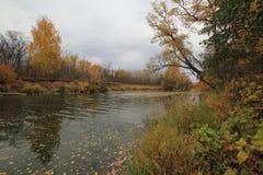 Rzeka w chmurnej pogodzie Fotografia Stock
