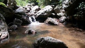 Rzeka w dżungli Zdjęcia Stock