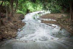 Rzeka w dżungli przy dniem Obrazy Royalty Free