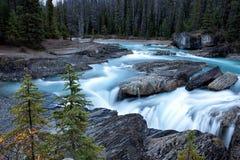 Rzeka w drewnach Obrazy Stock