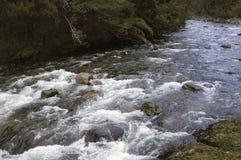 Rzeka w górach Fotografia Royalty Free