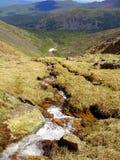 Rzeka w górach Obrazy Royalty Free