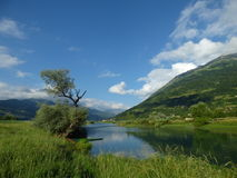 Rzeka w górach Montenegro, grodzki Plav Obraz Stock