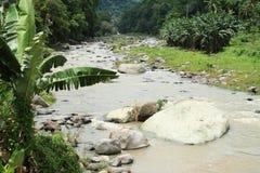 Rzeka w górach na Flores Obraz Stock