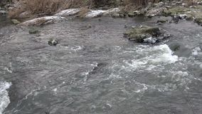 Rzeka w górach w zimie zdjęcie wideo