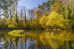 Rzeka w jesieni Fotografia Stock