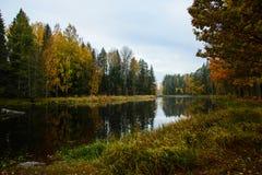 Rzeka w jesieni Obrazy Royalty Free