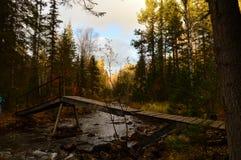 Rzeka w jesieni w górach Zdjęcie Royalty Free