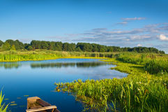 Rzeka w lato czasie Obraz Stock